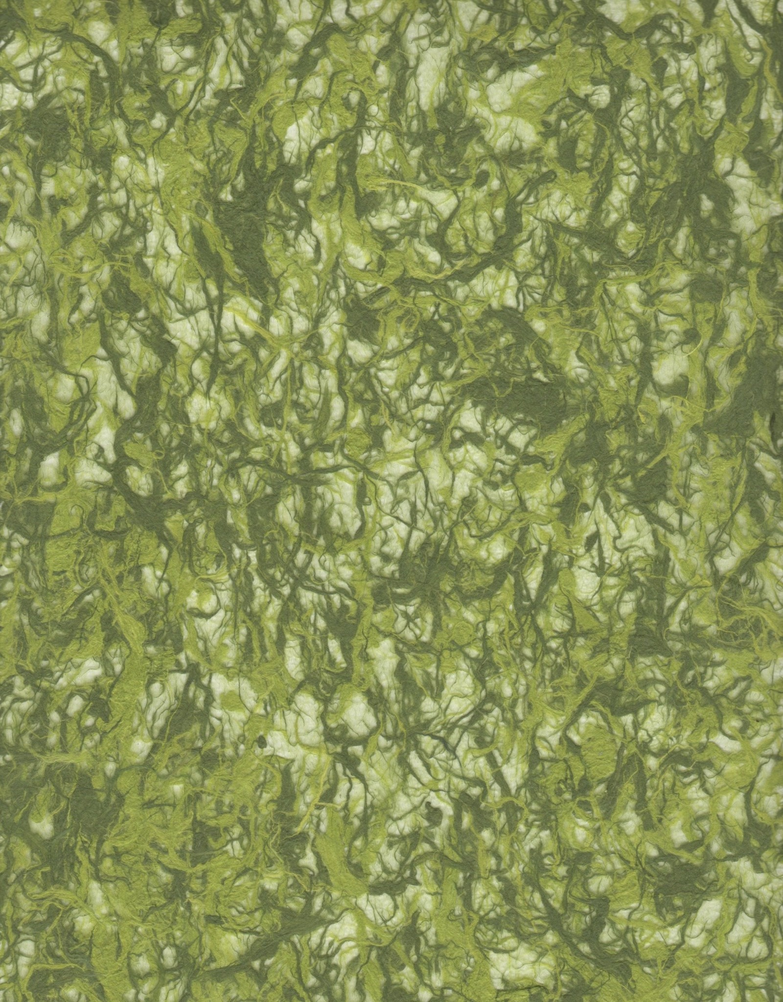 """Kozo Fiber, Lace Green and Olive, 25"""" x 37"""""""