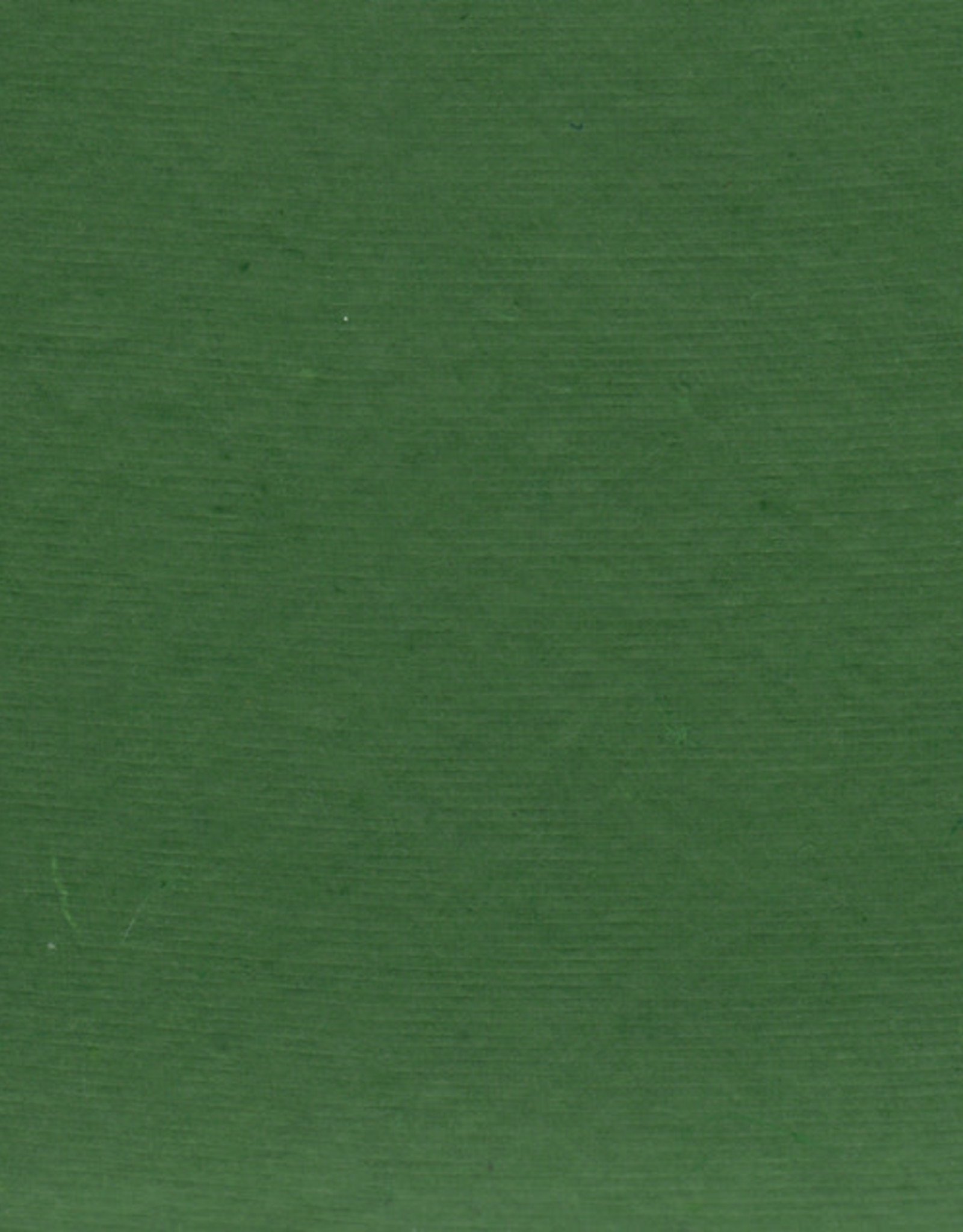 "Pastel Paper Green, 8 1/2"" x 11"", 25 Sheets"