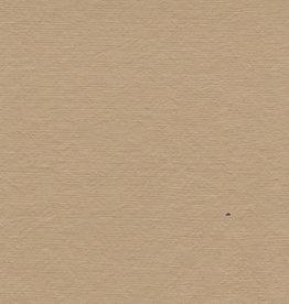 """Pastel Paper Tan, 19"""" x 25"""""""