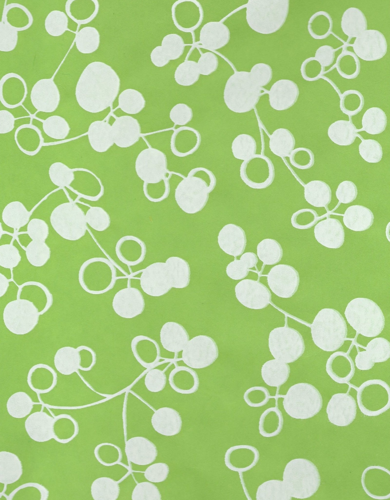 """Ginkgo Fruit, Apple Green with White, Mulberry Screenprint, 25"""" x 37"""""""