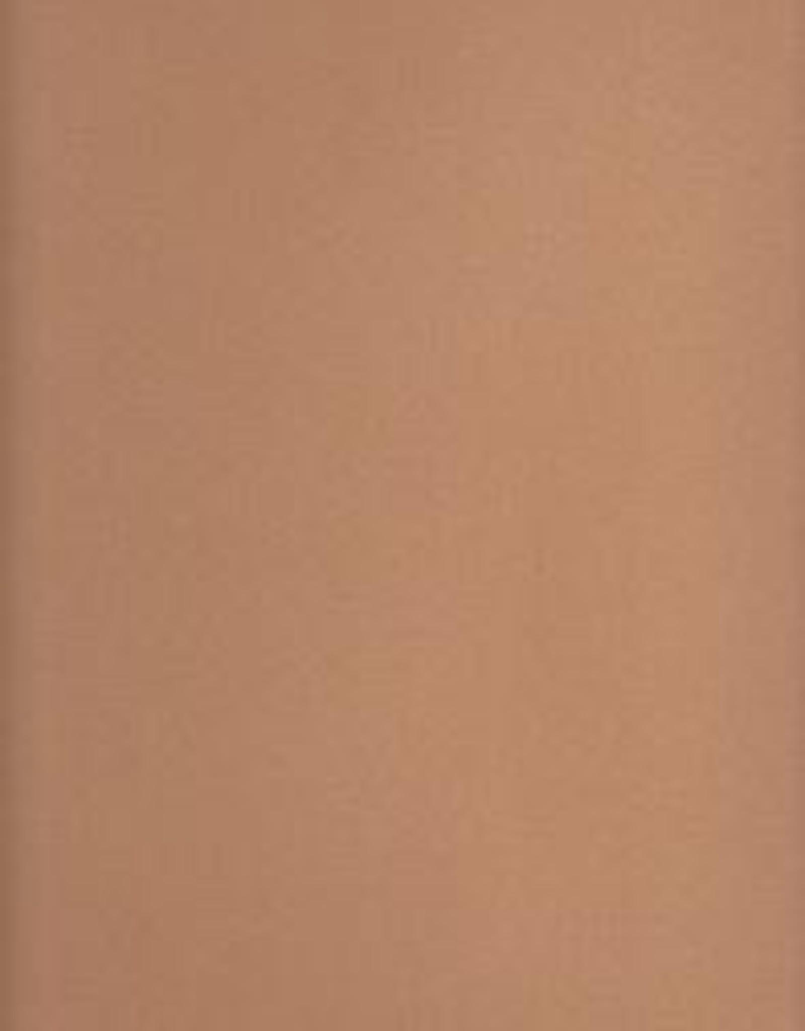 """La Carte Pastel Card Paper, Sand, 20"""" x 26"""""""