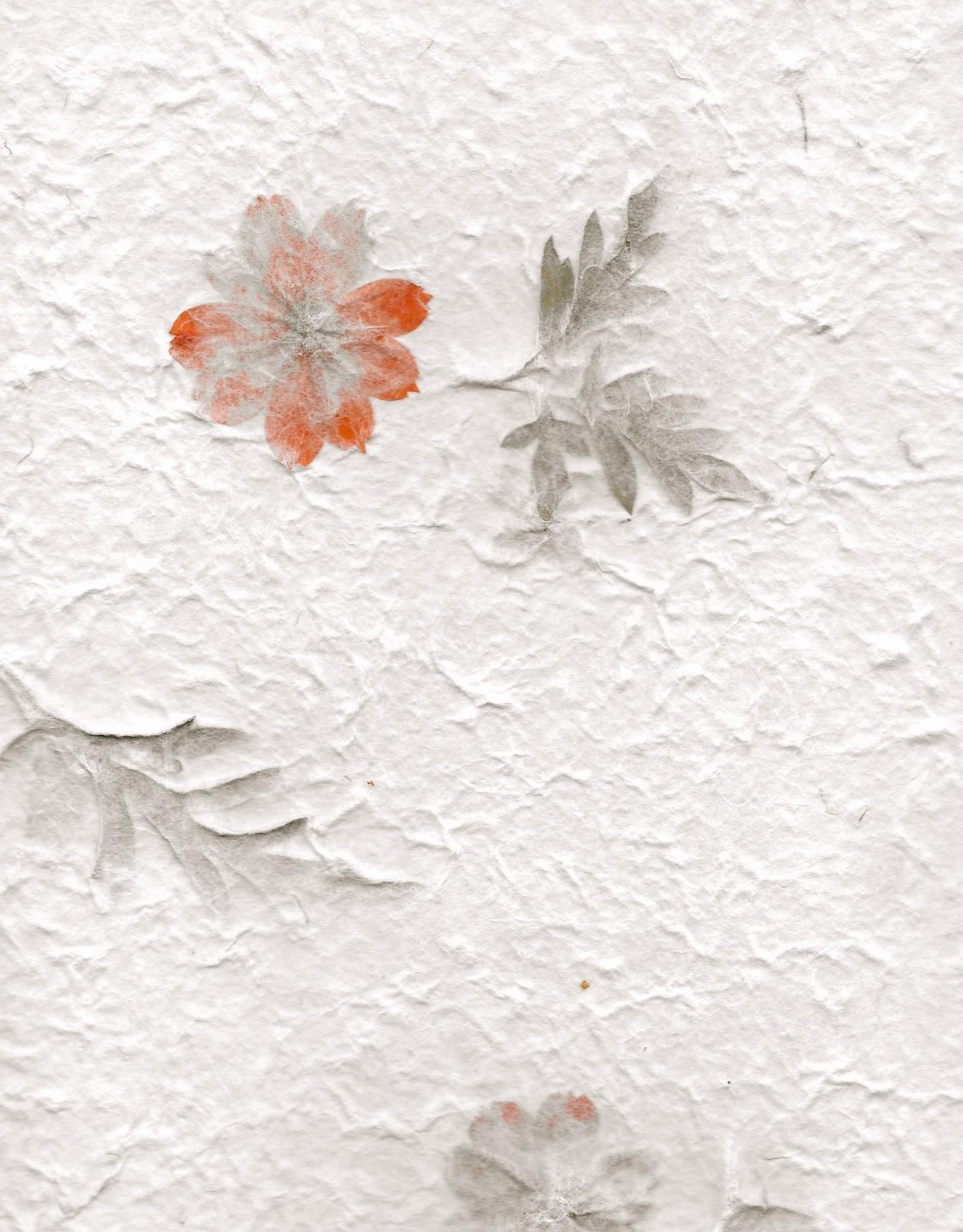 """Thai Garden Orange Flower, 22"""" x 30"""""""