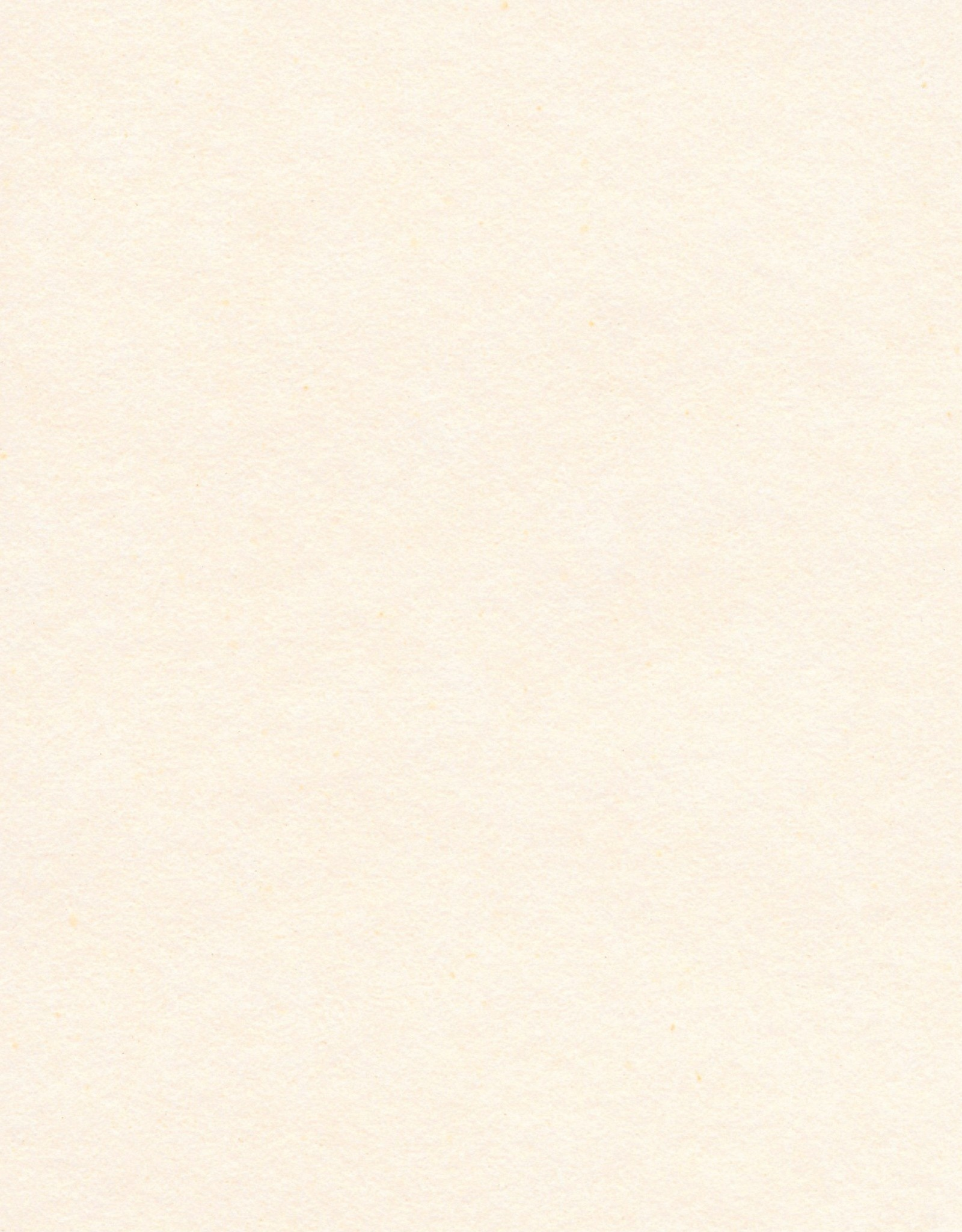 """Magnani Pescia, Cream, 22"""" x 30"""", 300gsm"""