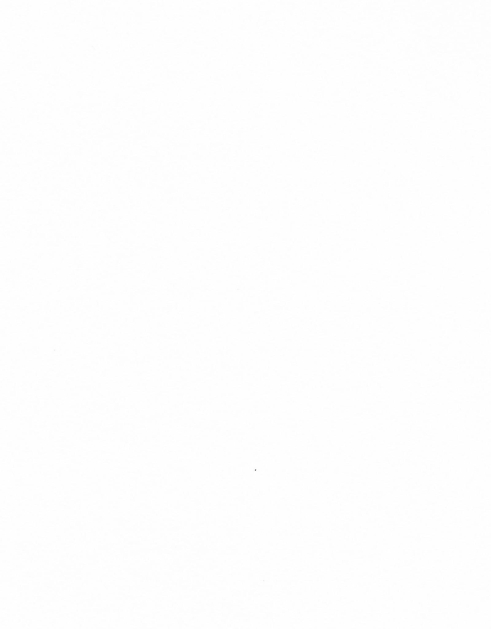 """Magnani Pescia, White, 22"""" x 30"""", 300gsm"""