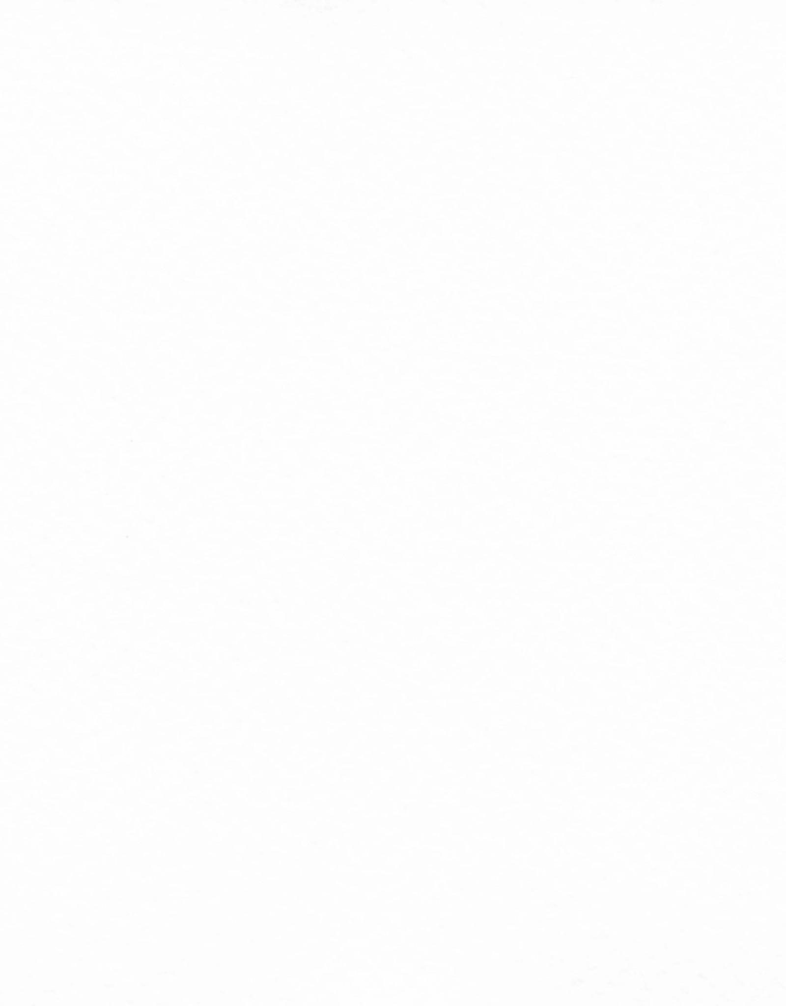 """Fabriano Tiziano #1, White, 20"""" x 26"""" 160gsm"""