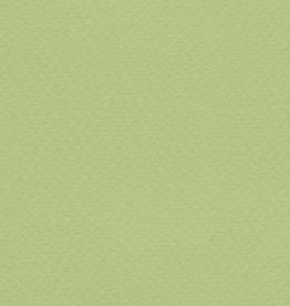 "Italy Fabriano Tiziano #11, Light Green, 20"" x 26"" 160gsm"