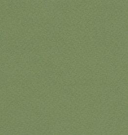 "Italy Fabriano Tiziano #14, Moss Green, 20"" x 26"" 160gsm"