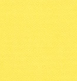 "Fabriano Tiziano #20, Lemon, 20"" x 26"" 160gsm"