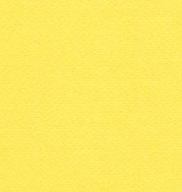 """Italy Fabriano Tiziano #20, Lemon, 20"""" x 26"""" 160gsm"""