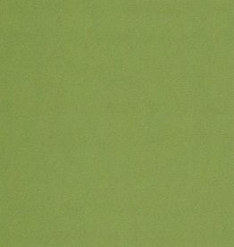 "Fabriano Cocktail, Mojito (Green),19.5"" x 27.5"" 290gsm / 140#"