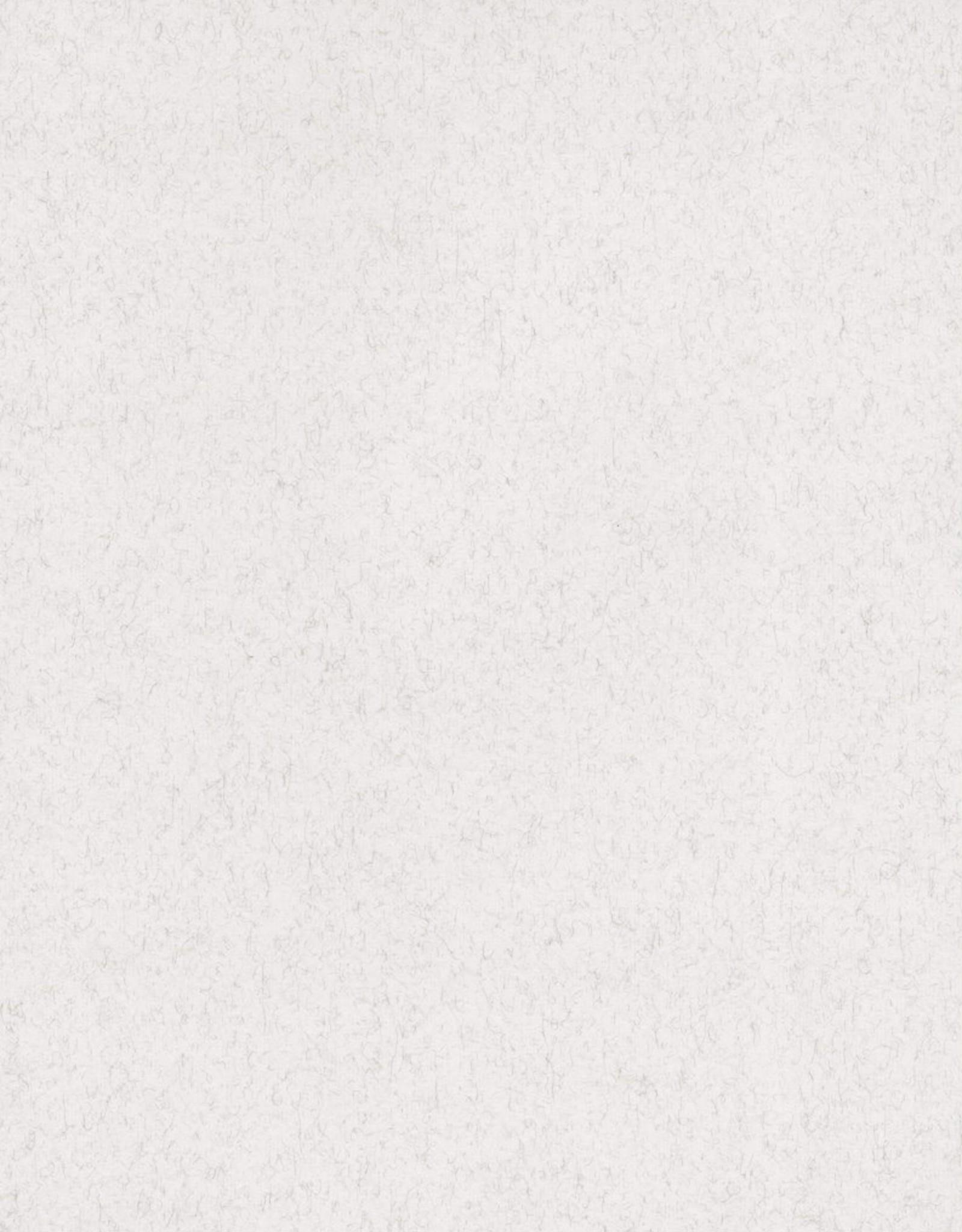 "Fabriano Vice Versa (Elle Erre), Felt Light Gray, 20"" x 27.5"", 220gsm / 135#"