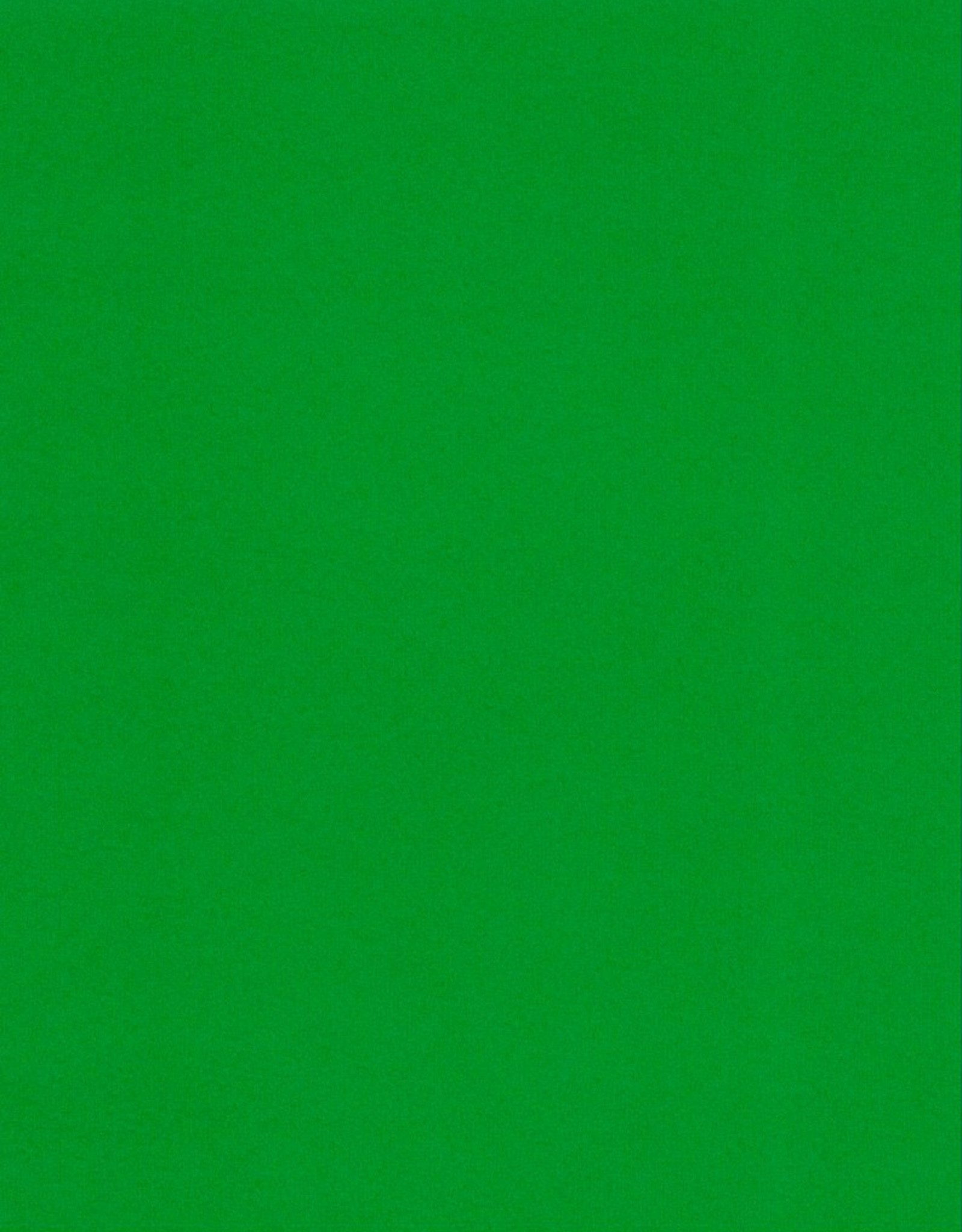 """Fabriano Vice Versa (Elle Erre), Forest Green, 20"""" x 27.5"""", 220gsm / 135#"""