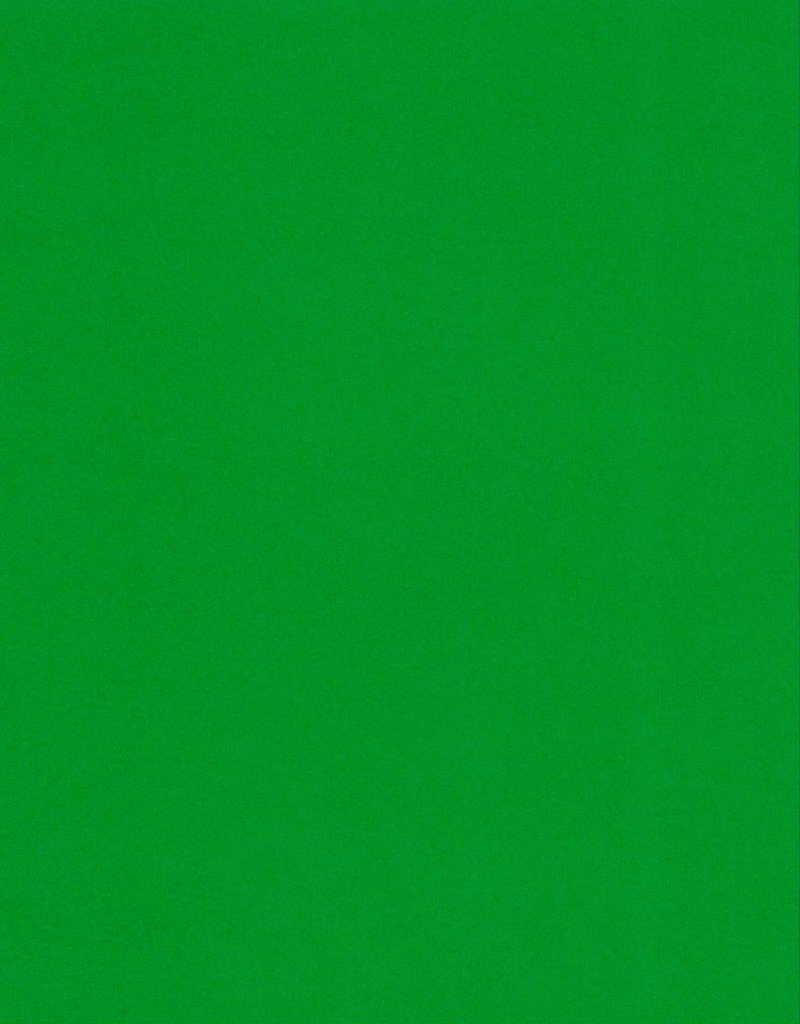 "Italy Fabriano, Vice Versa (Elle Erre), Forest Green, 20"" x 27.5"", 220gsm / 135#"