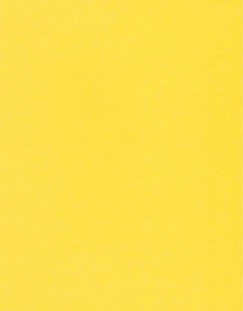 "Fabriano Vice Versa (Elle Erre), Lemon Yellow, 20"" x 27.5"", 220gsm / 135#"