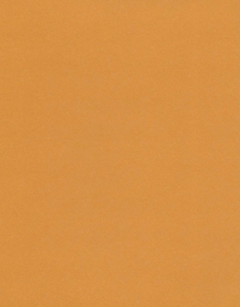 "Fabriano Vice Versa (Elle Erre), Light Brown, 20"" x 27.5"", 220gsm / 135#"
