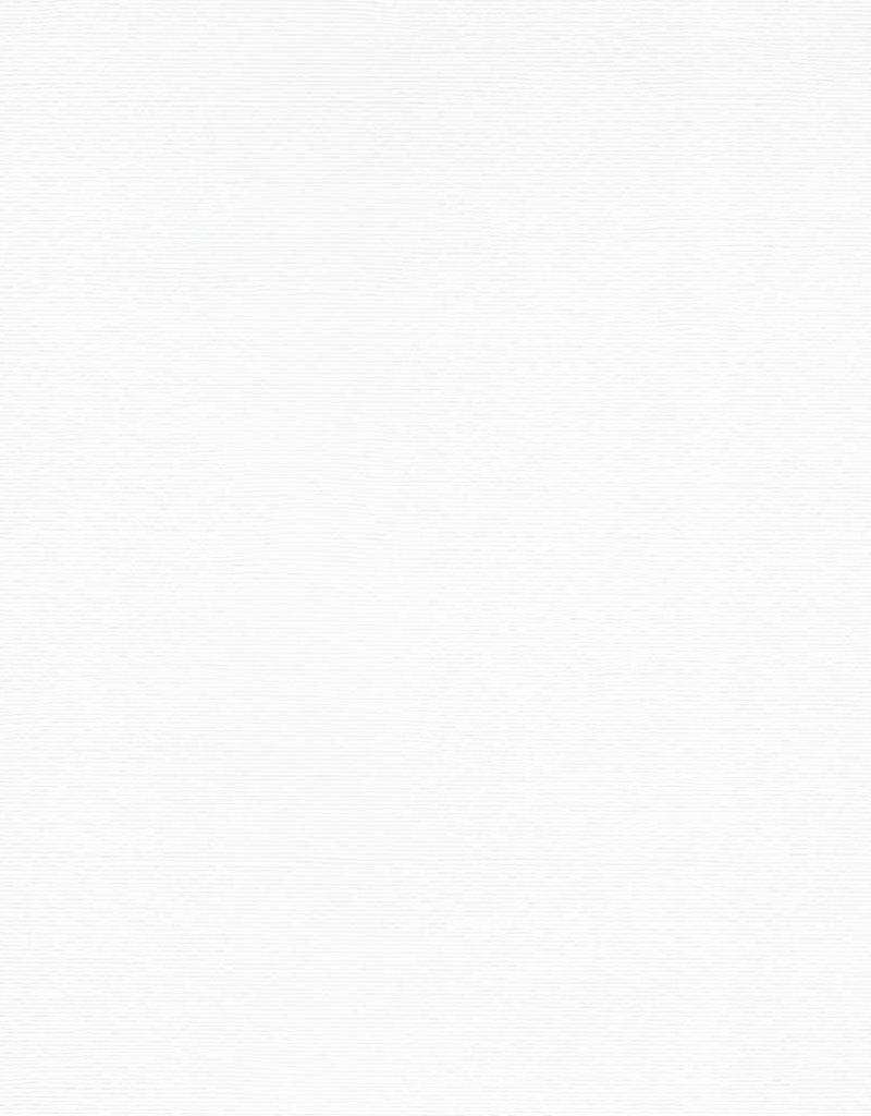 "Italy Fabriano, Vice Versa (Elle Erre), White, 20"" x 27.5"", 220gsm / 135#"