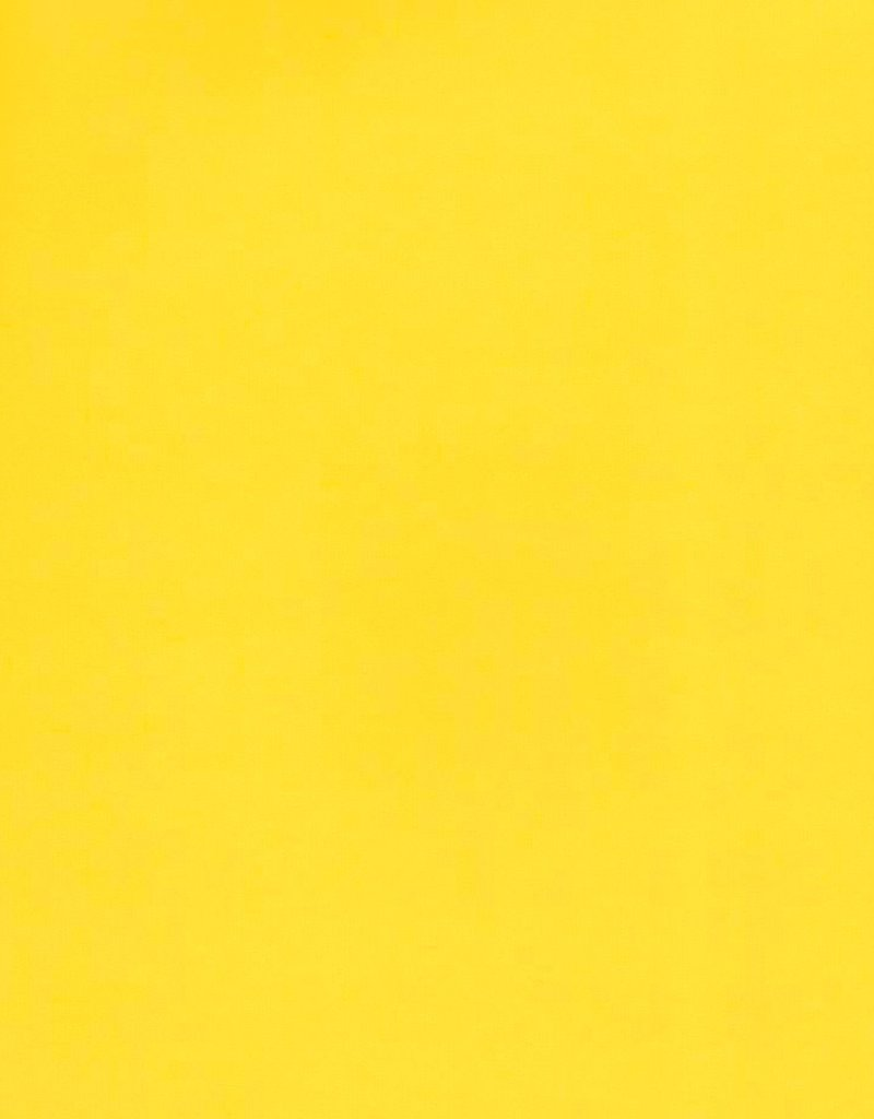 """Italy Fabriano, Vice Versa (Elle Erre), Yellow, 20"""" x 27.5"""", 220gsm / 135#"""