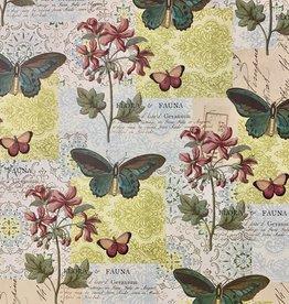 """Cavallini Flora & Fauna Butterfly, Cavallini Poster Print, 20"""" x 28"""""""