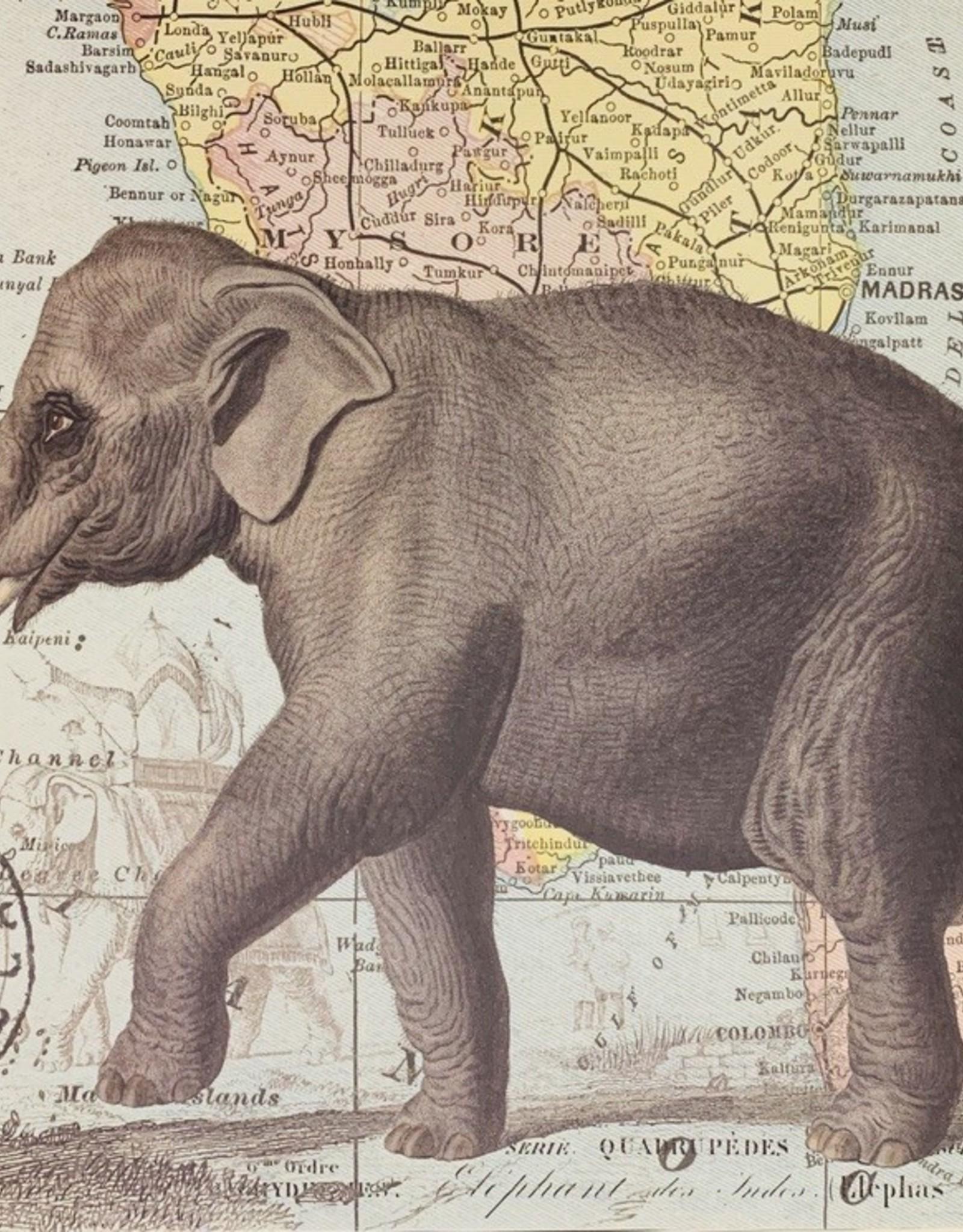 "Cavallini Elephant with Map of India, Cavallini Poster Print, 20"" x 28"""