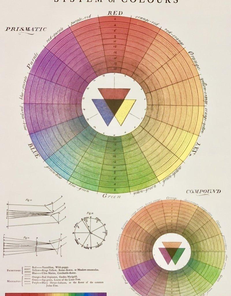 "Cavallini Color Wheel, Poster Print, 20"" x 28"""