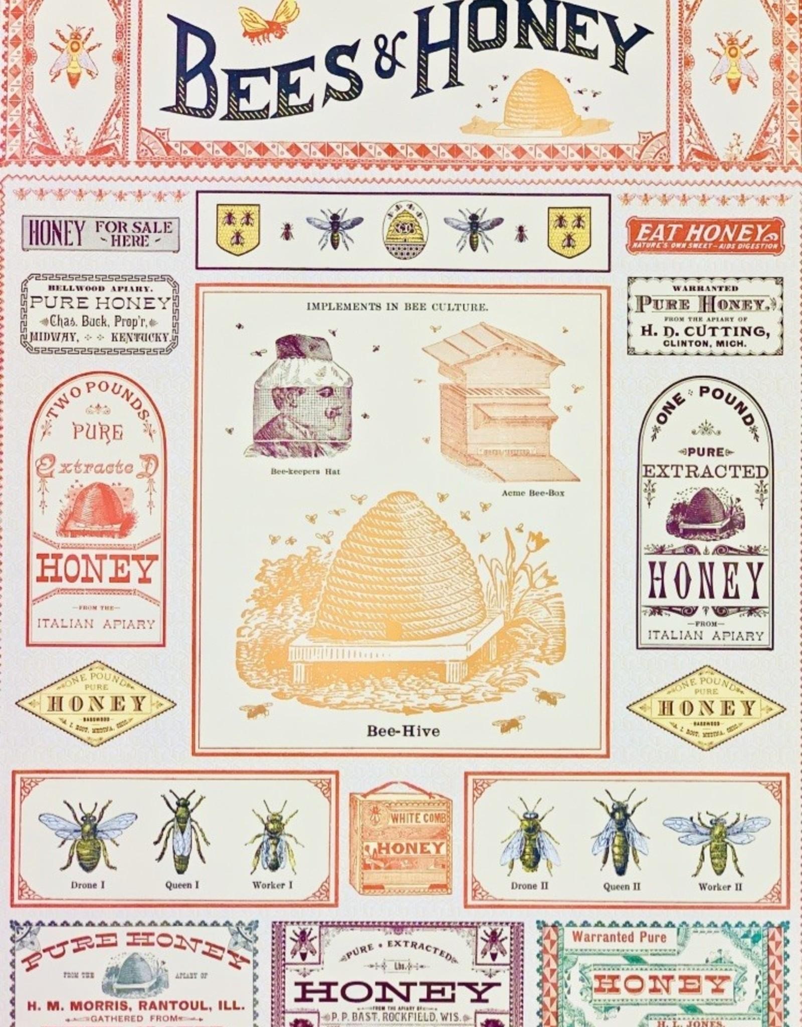 "Cavallini Bees & Honey, Cavallini Poster Print, 20"" x 28"""