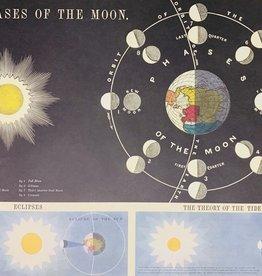 "Cavallini Moon Phases, Cavallini Poster Print, 20"" x 28"""