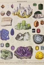 "Cavallini Mineralogie, Cavallini Poster Print, 20"" x 28"""