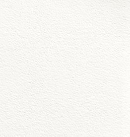 "Lanaquarelle Watercolor, 140#, Cold, 22"" x 30"""