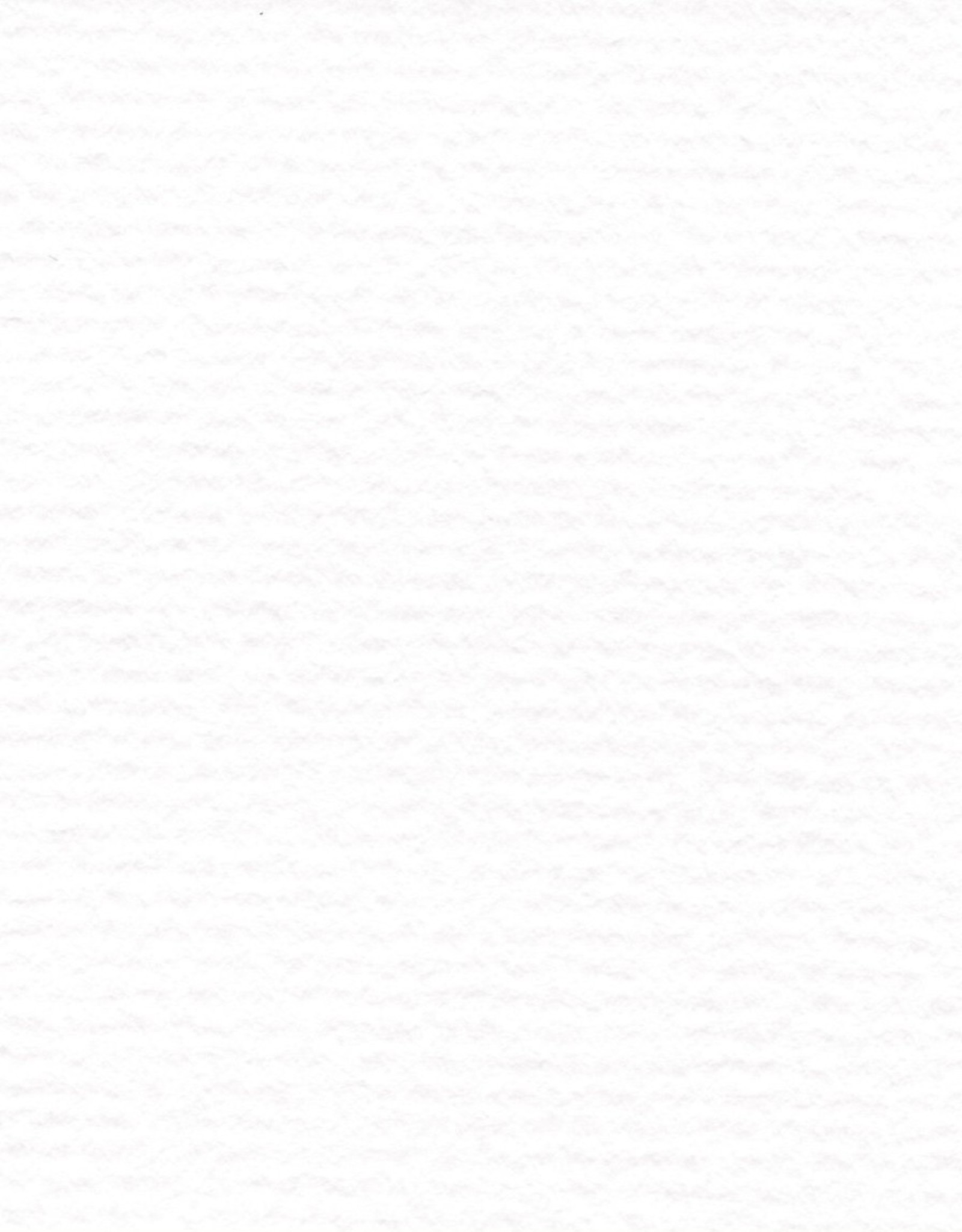 "Hahnemuhle Bugra, White #309, 33"" x 41"" 130 gsm"