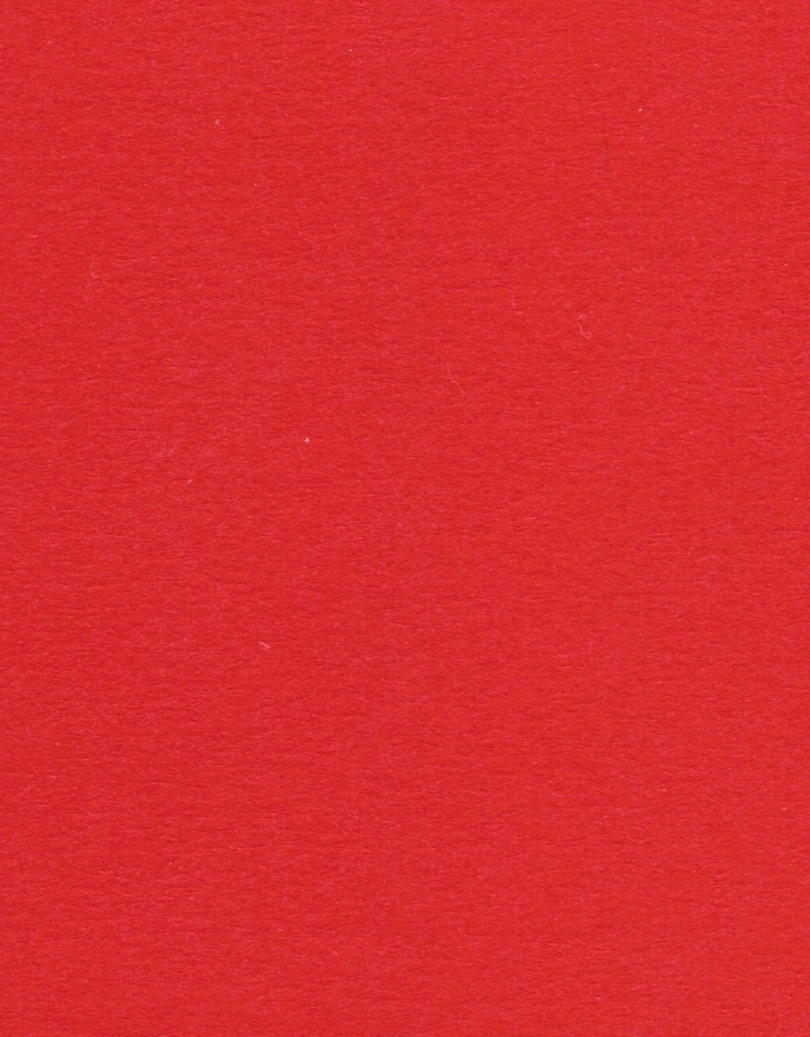 "Colorplan, 91#, Text, Bright Red, 25"" x 38"", 135 gsm"