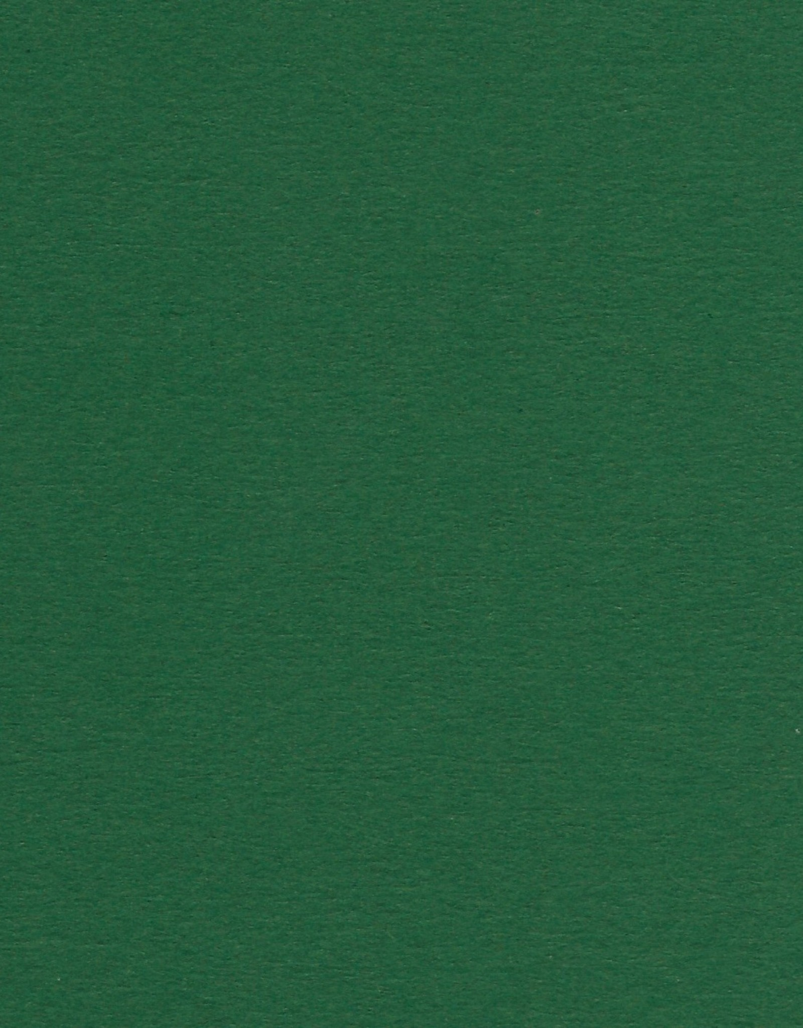 """Colorplan, 91#, Text, Forest Green, 25"""" x 38"""", 135 gsm"""