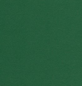 "Colorplan, 91#, Text, Forest Green, 25"" x 38"", 135 gsm"