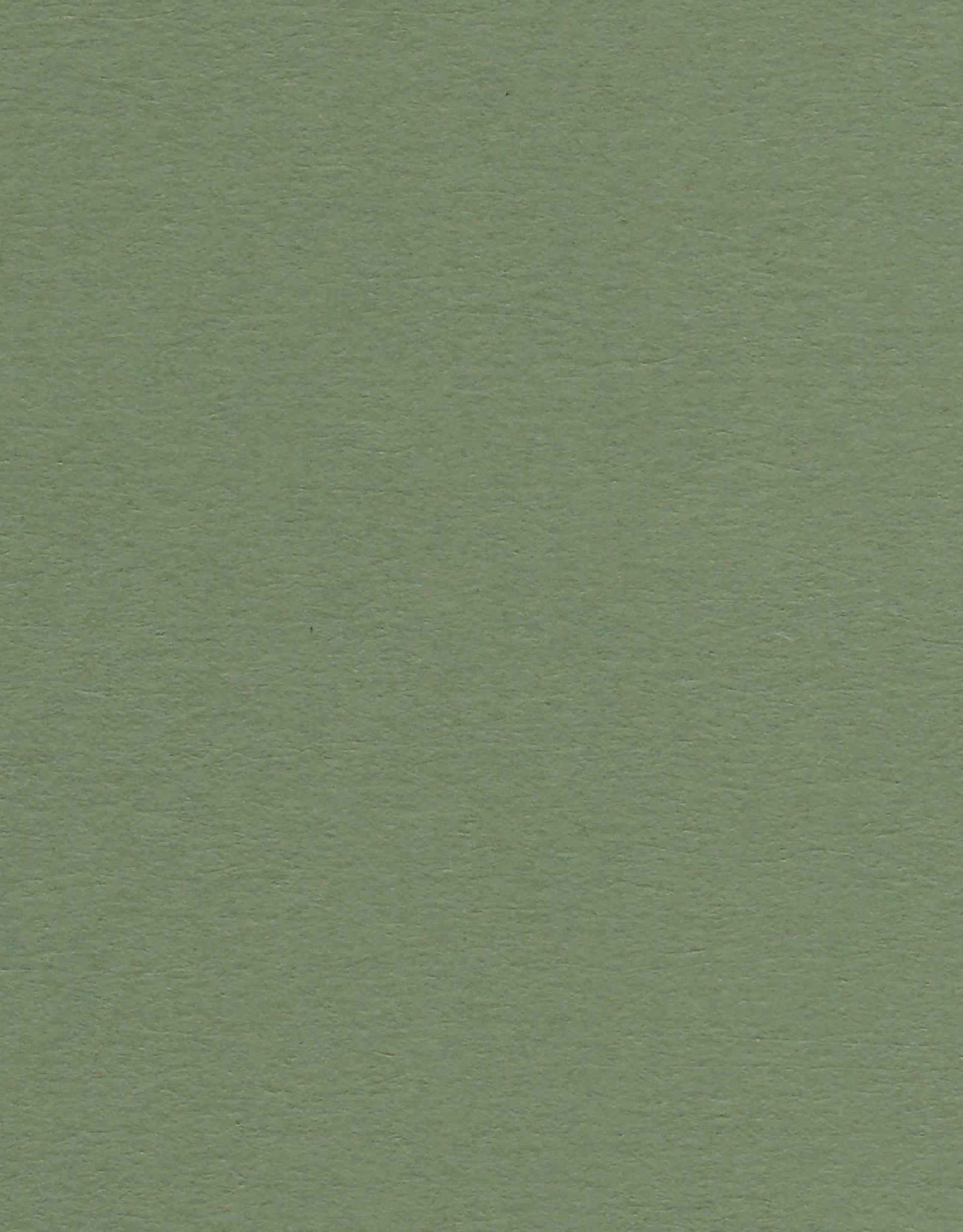 """Colorplan, 91#, Text, Mid Green, 25"""" x 38"""", 135 gsm"""