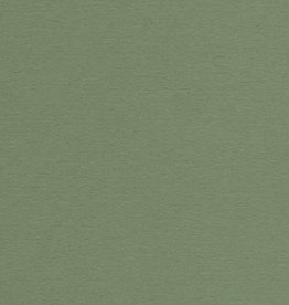 """Domestic Colorplan, 91#, Text, Mid Green, 25"""" x 38"""", 135 gsm"""