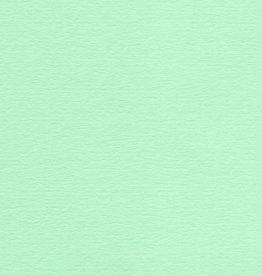 "Colorplan, 91#, Text, Park Green, 25"" x 38"", 135 gsm"