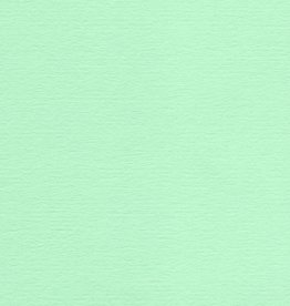 """Domestic Colorplan, 91#, Text, Park Green, 25"""" x 38"""", 135 gsm"""