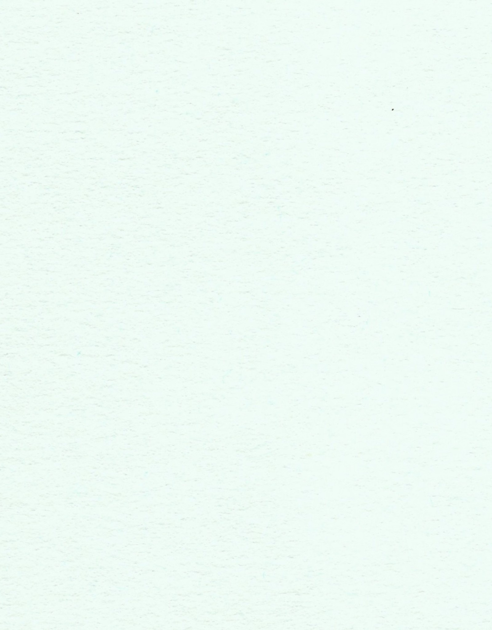 "Colorplan, 91#, Text, Powder Green, 25"" x 38"", 135 gsm"