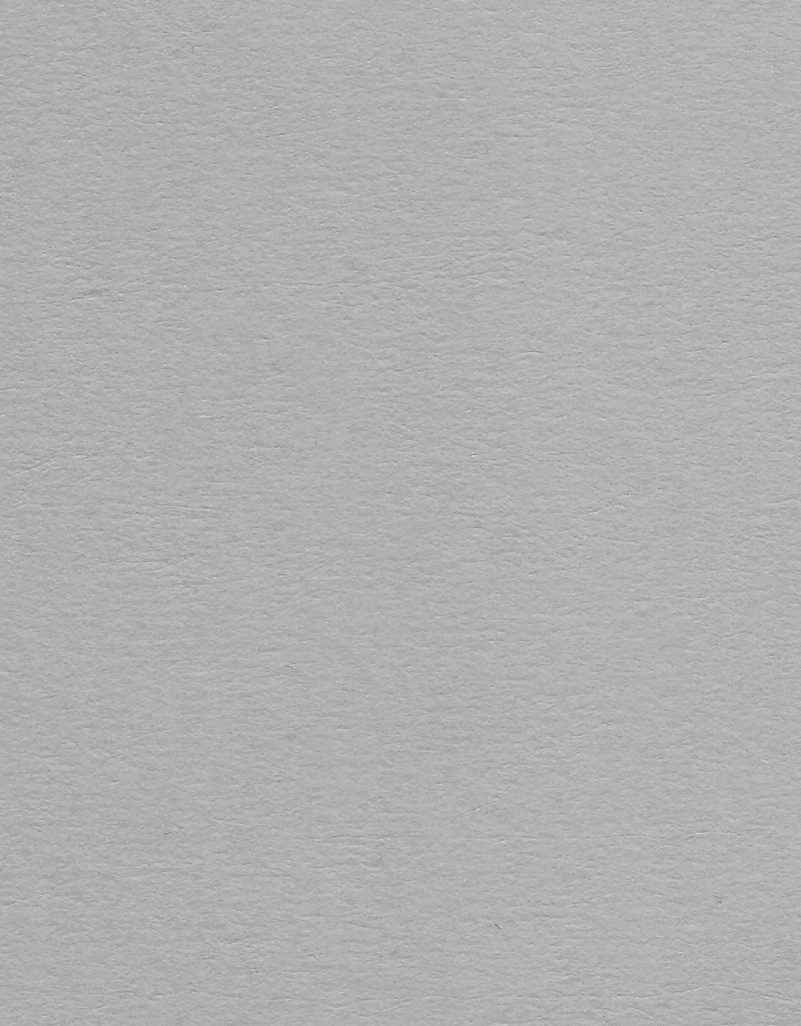 "Colorplan, 91#, Text, Real Grey, 25"" x 38"", 135 gsm"