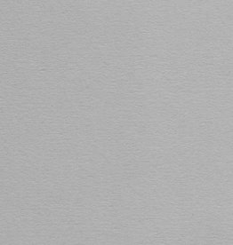 "Colorplan, 91#, Text, Real Grey, 25"" x 38"", 135 gsm"