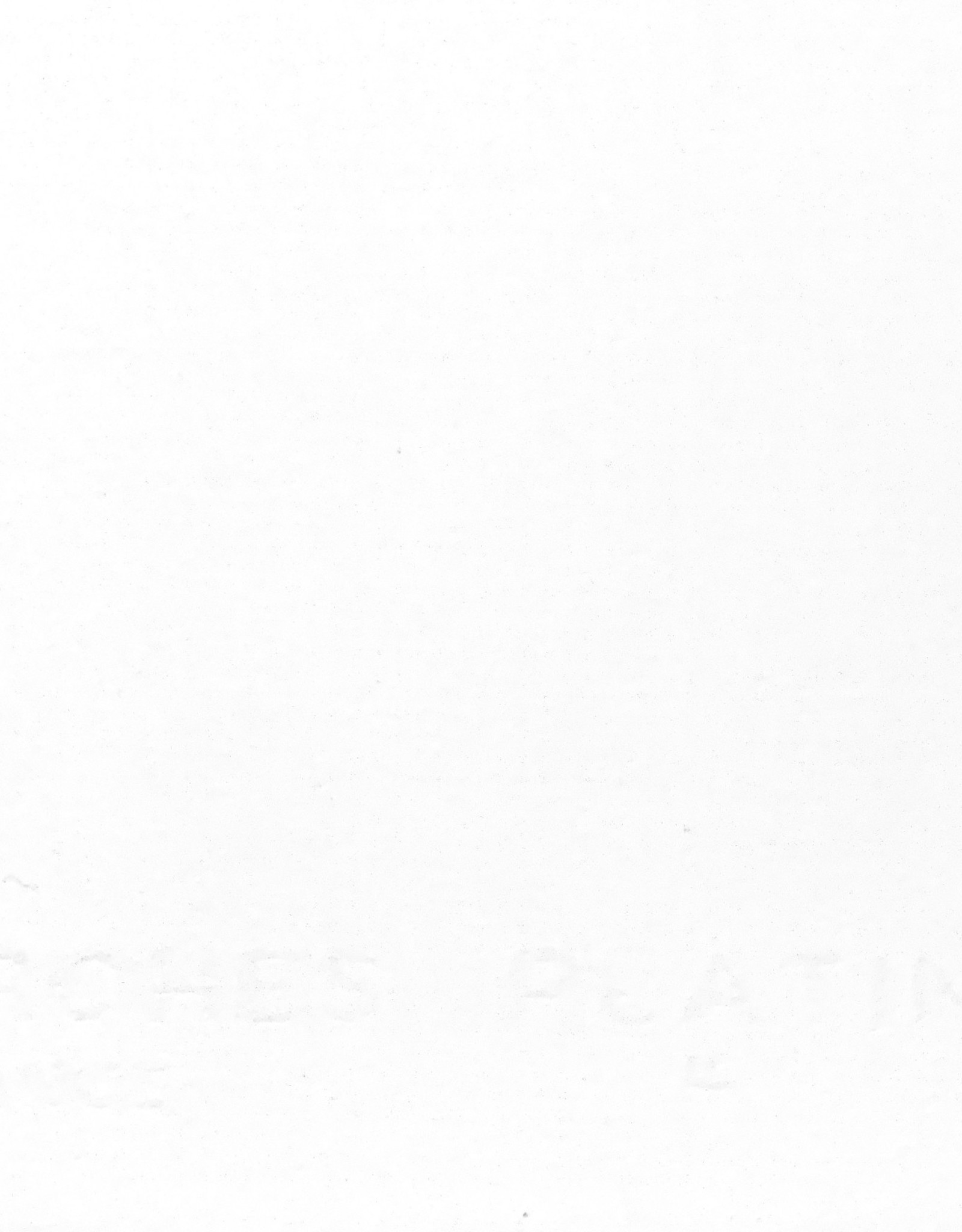 "Arches Platine, 22"" x 30"", 310gsm"