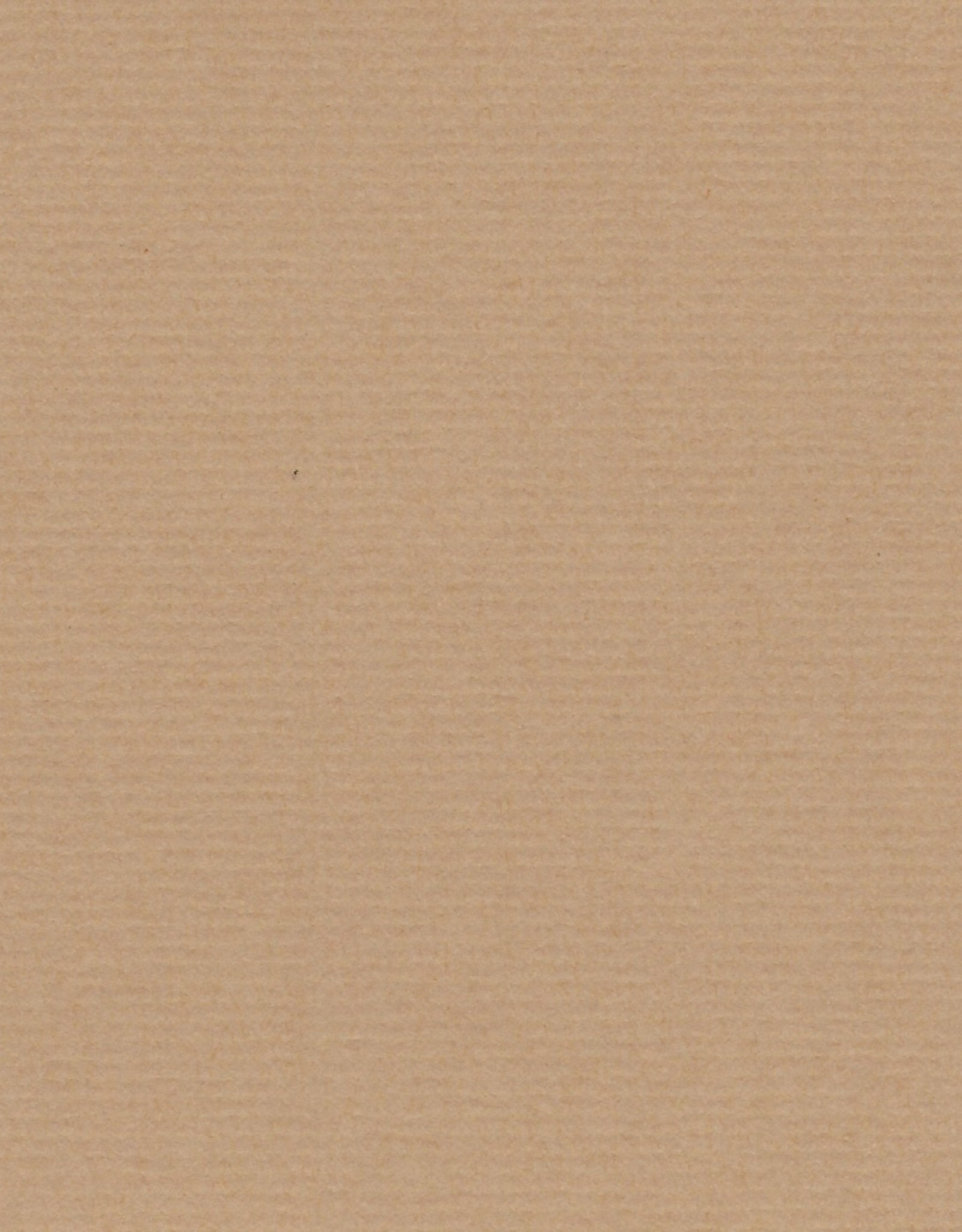 "Fabriano Fabriano Ingres, Lightweight, #607, Taupe, 27"" x 39"", 90gsm"
