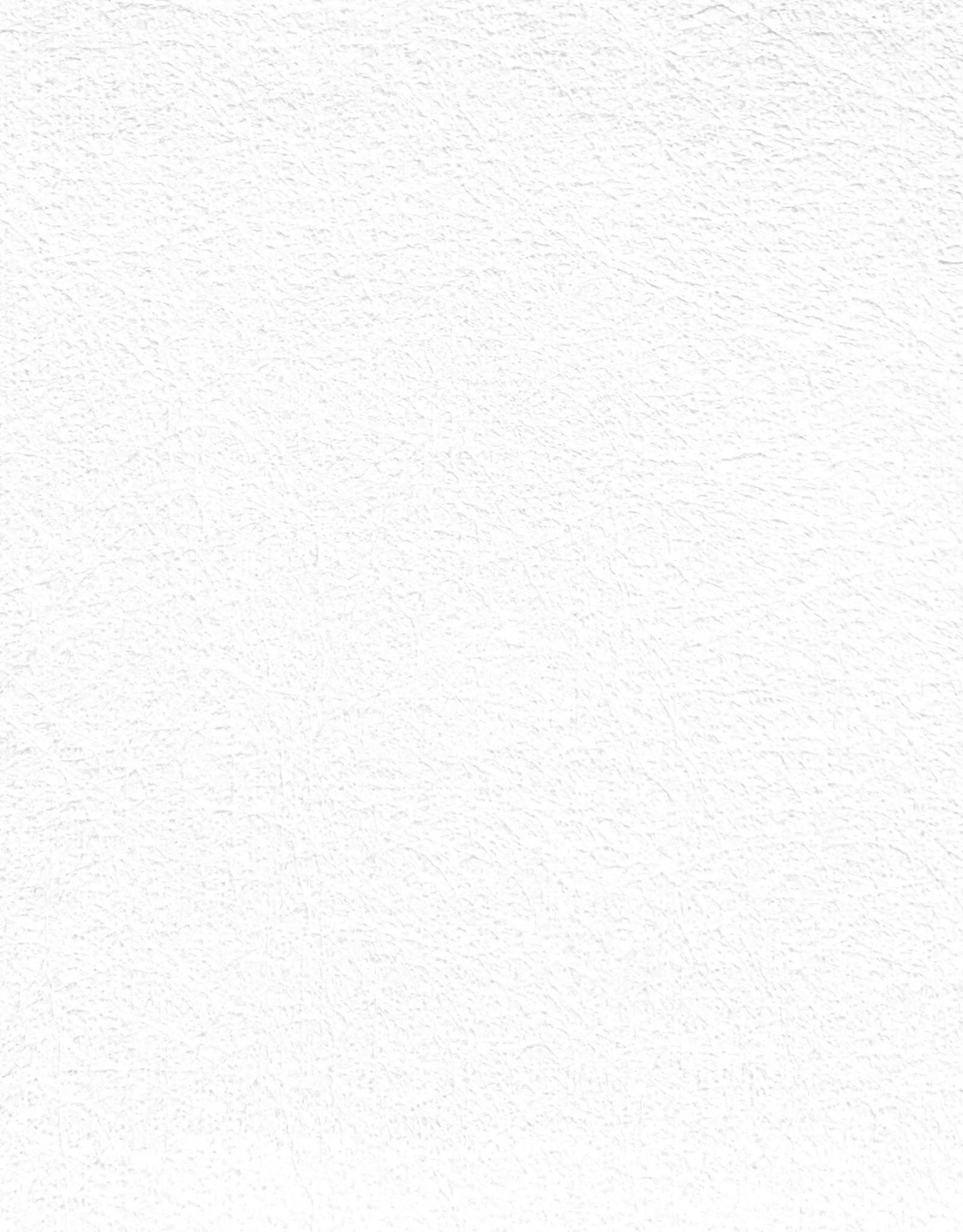 """Evolon AP, 58 gsm, 22"""" x 30"""", Single Sheet"""