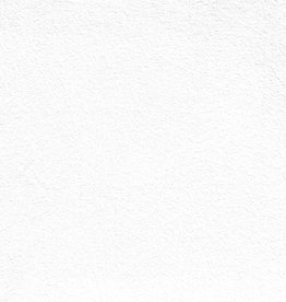 Domestic Evolon AP, 58 gsm, 22X30, 20 Sheet Pack