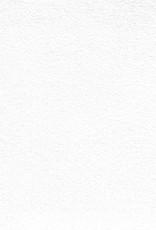 """Evolon AP Roll, 168 gsm, 80"""" x 10 yd"""