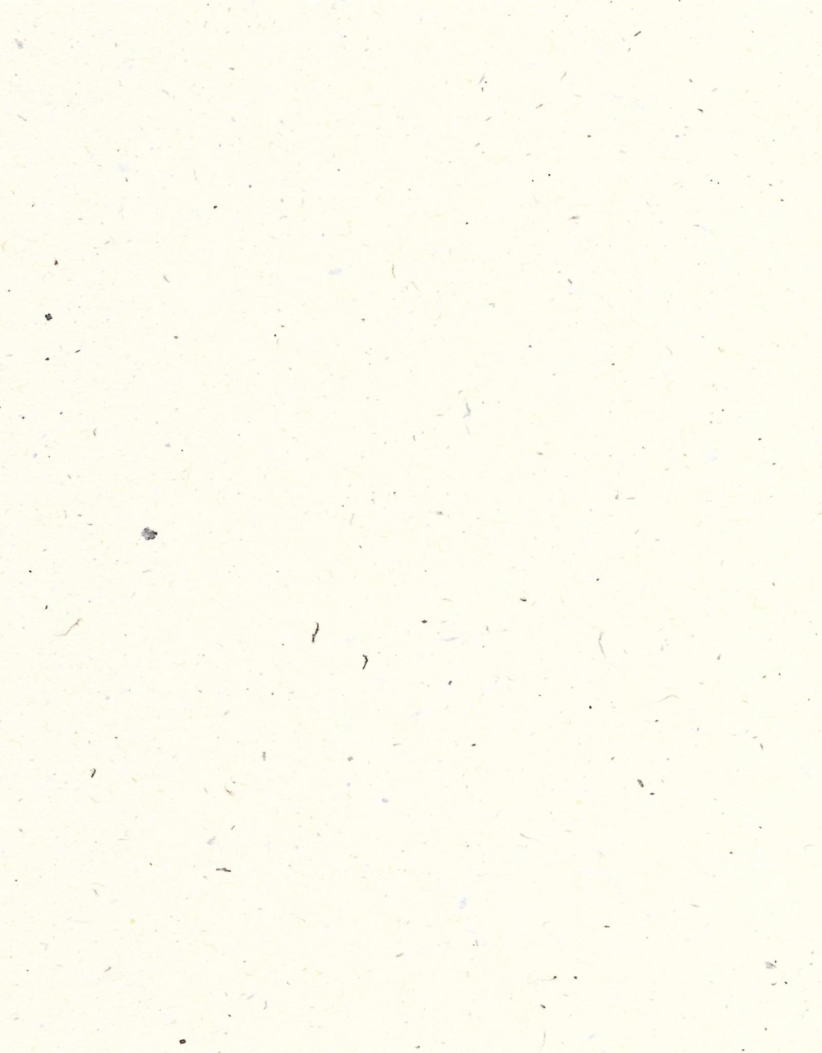 """Speckletone Cover, Madero Beach, 26"""" x 40"""""""