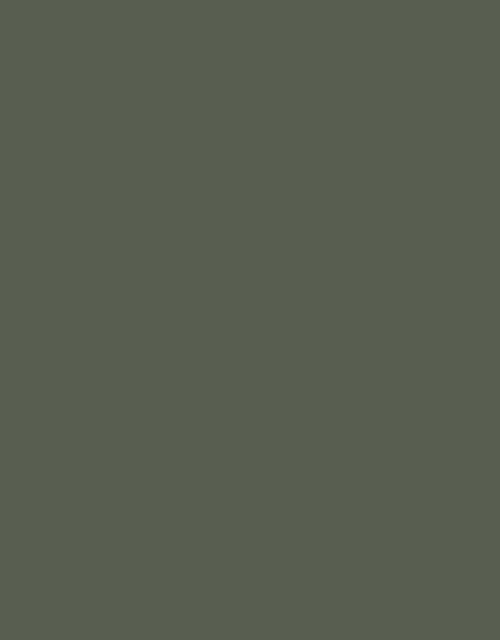 Sennelier, Extra Fine Soft Pastel, Reseda Gray Green