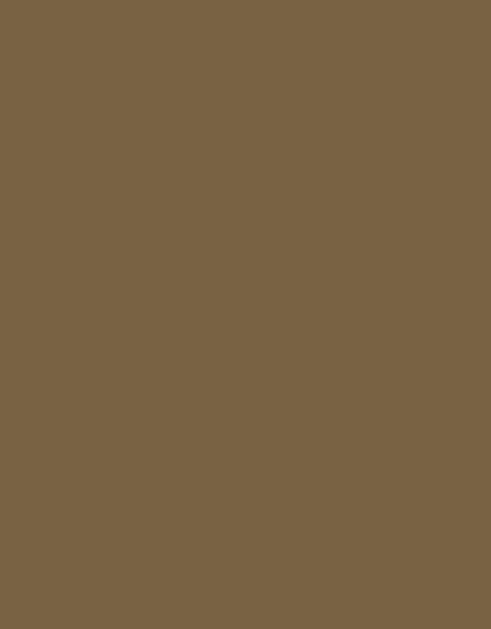 Sennelier, Extra Fine Soft Pastel, Olive Gray