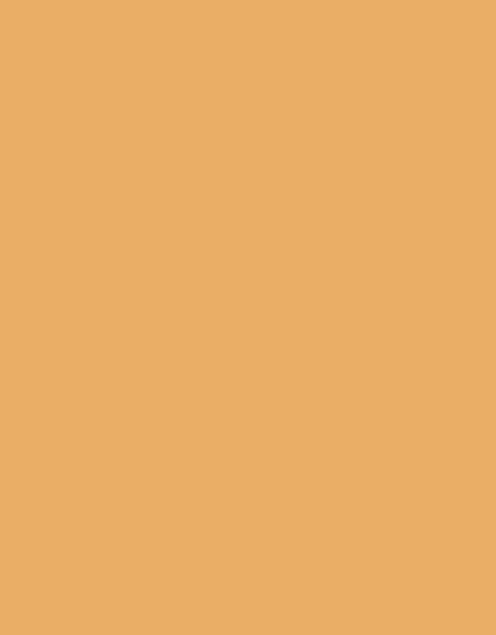 Sennelier, Extra Fine Soft Pastel, Brown Ochre