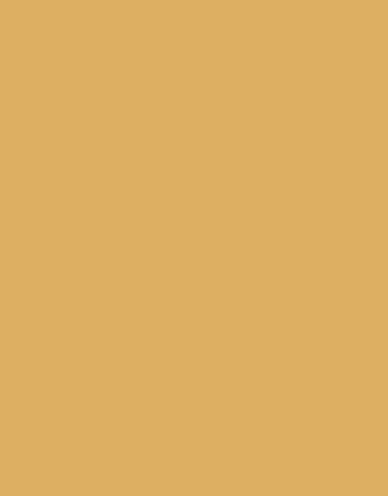 Sennelier, Extra Fine Soft Pastel, Amber, N 953