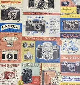 """Cavallini Camera Vintage, Cavallini Poster Print, 20"""" x 28"""""""